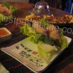 nems au poulet_photo site