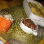 trilogie saumon_photo wall