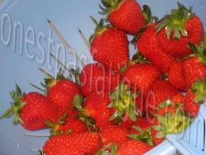 mousse fraise_etape 2