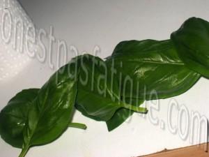 aubergines farcies ricotta_etape 4