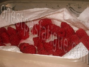tiramisu fraises_etape 14