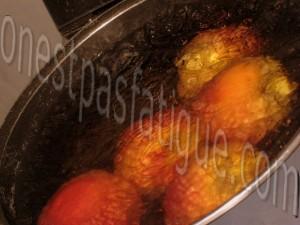 macarons peche safran basilic_etape 19