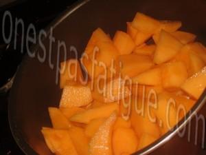 creme glacee vanille coulis melon_etape 3