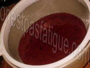 Bûche spéculoos-mirabelle, domes meringues-marron, gelee fruits rouges_etape 19