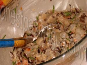 raviolis crevettes gingembre_etape 6