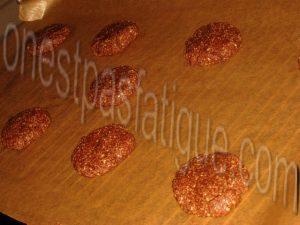 cookies son d'avoine cacao_etape 7 bis