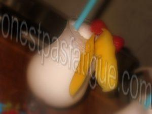 Milk shake coconut caramel passion bis